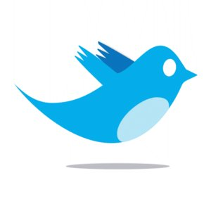 Twitter_Bird_Logo_by_iPotion.png